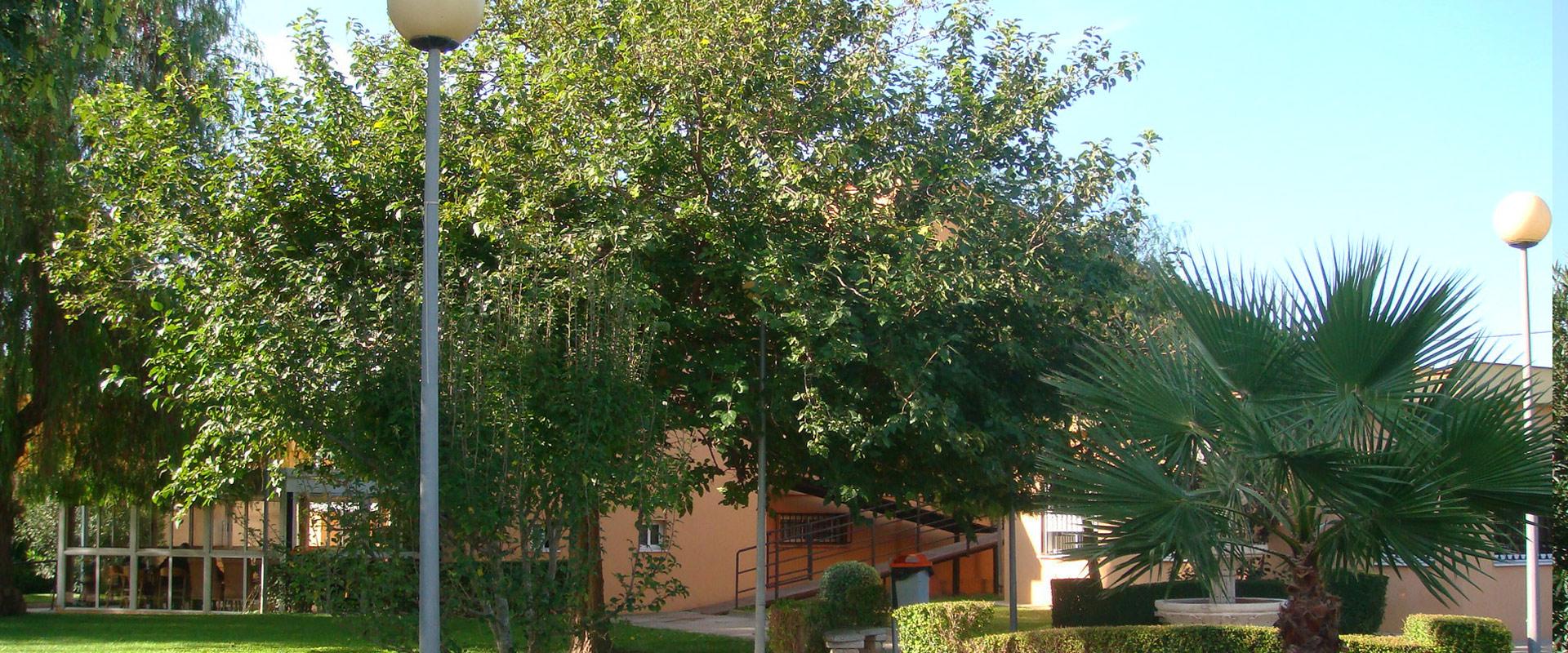 Residencia-Entre-Naranjos_3